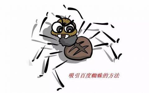 如何让凯发娱乐在线被蜘蛛抓取?