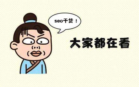 满满的seo干货,揭秘新站收录暴增小技巧!