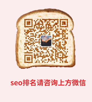 seo咨询